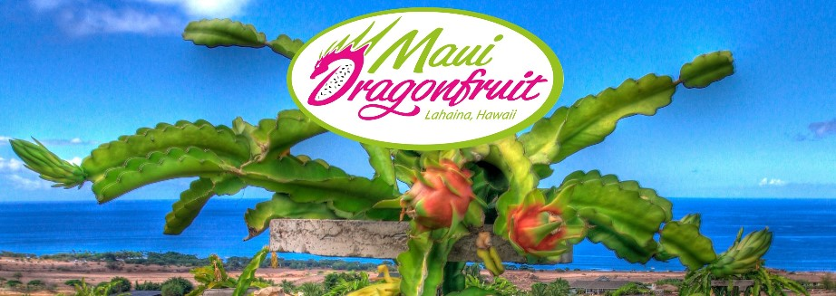 Maui Dragonfruit Farm